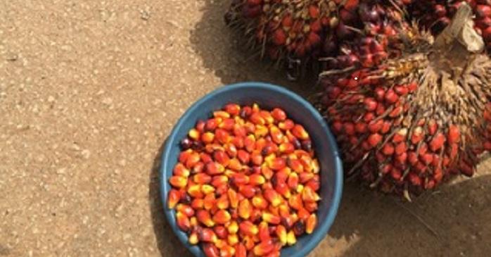 Ghana CHSE